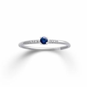 4284-1828 Ring · K11911W